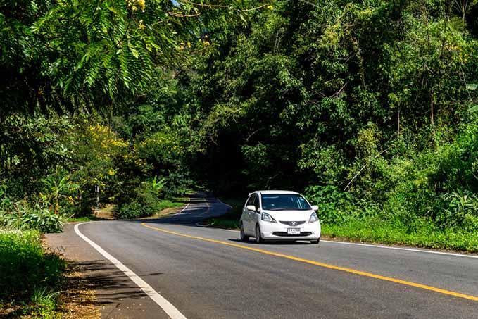 green-dealerships-trees-roads